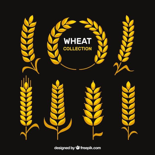 Raccolta di grano piatto Vettore gratuito