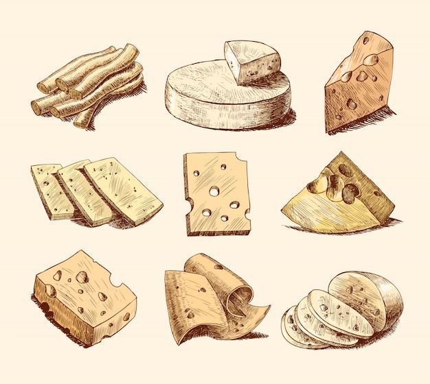 Raccolta di illustrazione di schizzo di formaggio Vettore gratuito