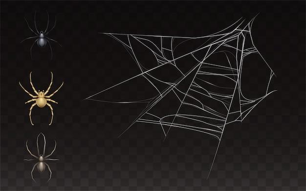 Raccolta di ragnatela e ragno realistico. web con insetto isolato su sfondo scuro. Vettore gratuito
