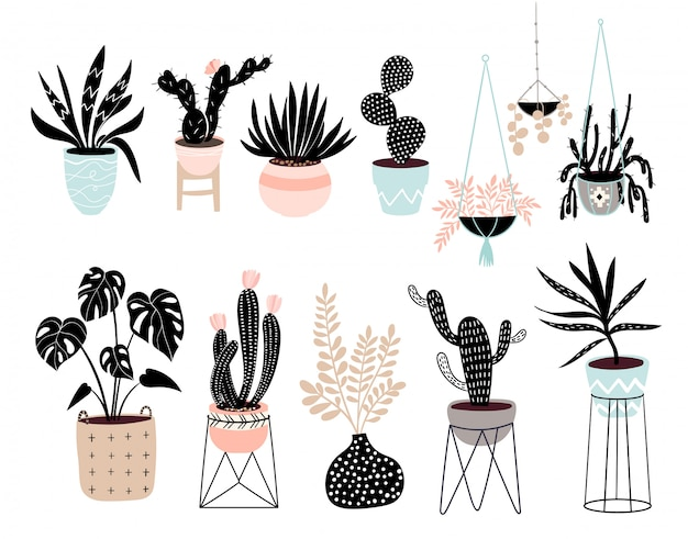 Raccolta disegnata a mano delle piante della casa con differenti piante tropicali isolate Vettore Premium