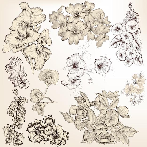 Raccolta fiori disegnati a mano scaricare vettori premium for Fiori disegnati