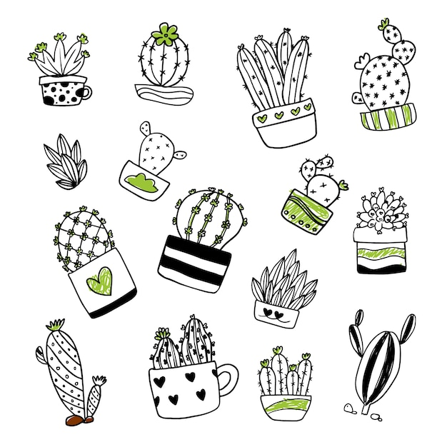 Raccolta illustrazione cactus Vettore gratuito