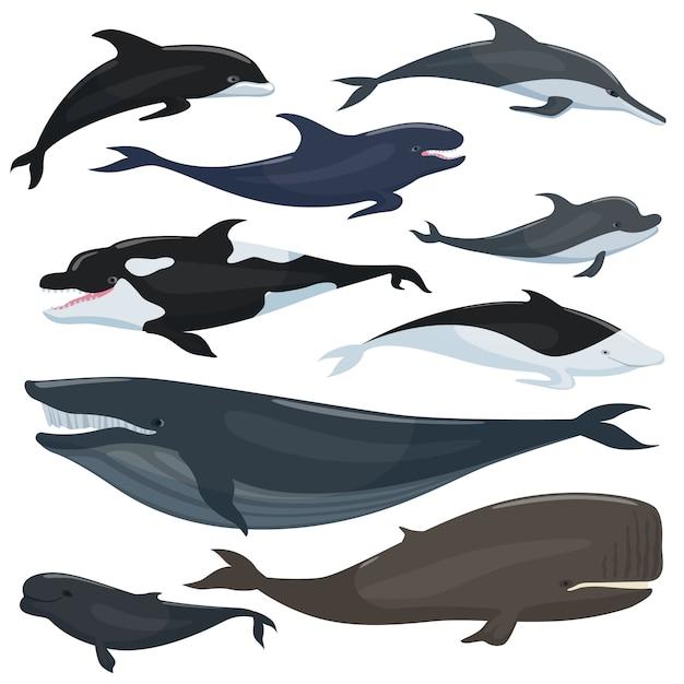 Raccolta nautica di diversi grandi pesci sott'acqua e animali mammiferi Vettore Premium