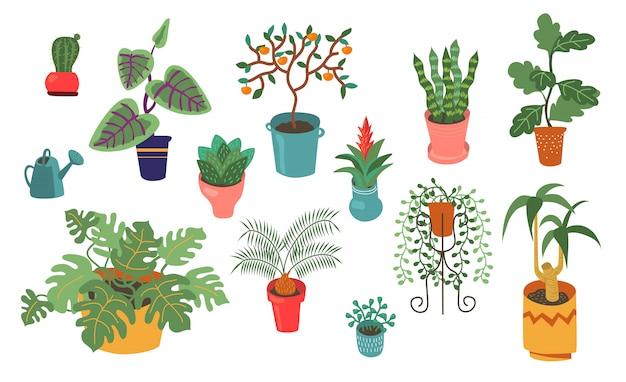 Raccolta piana di vettore di varie piante domestiche Vettore gratuito