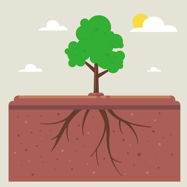 Radici degli alberi sottoterra Vettore Premium