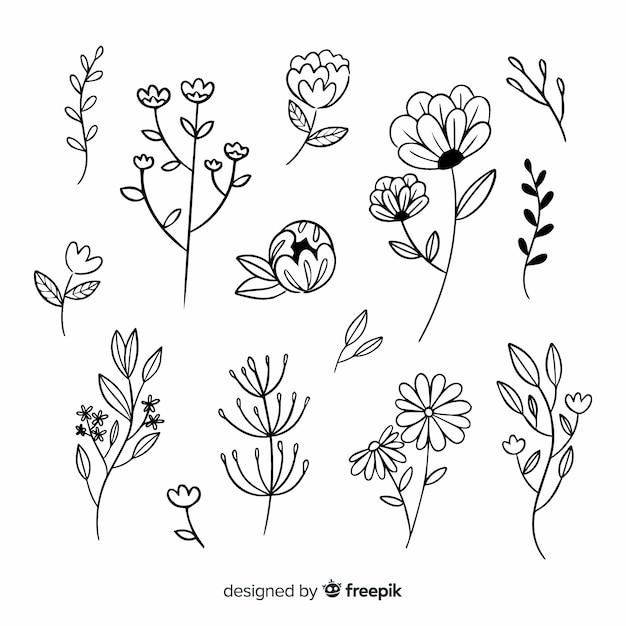 Ramo di fiori e foglie disegnati a mano Vettore gratuito