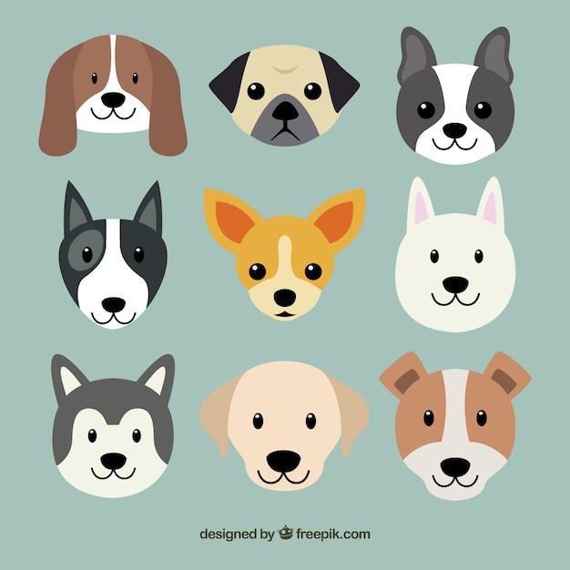 Razze di cani carino Vettore gratuito