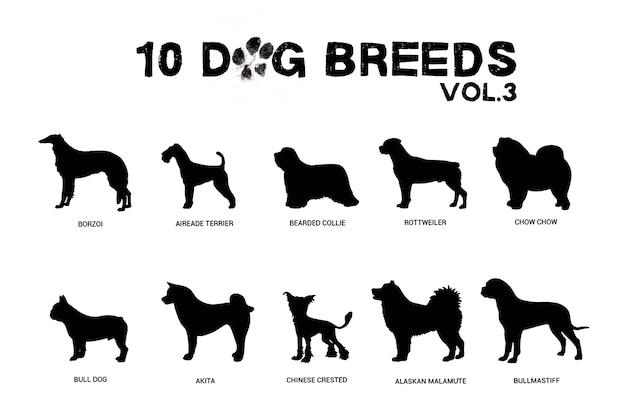 Razze di cani Vettore Premium