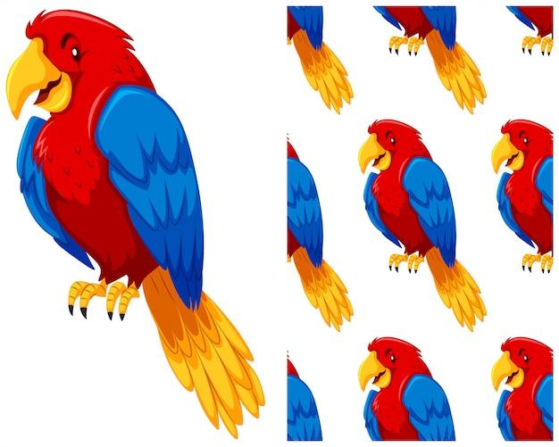 Reticolo senza giunte del pappagallo isolato su bianco Vettore gratuito