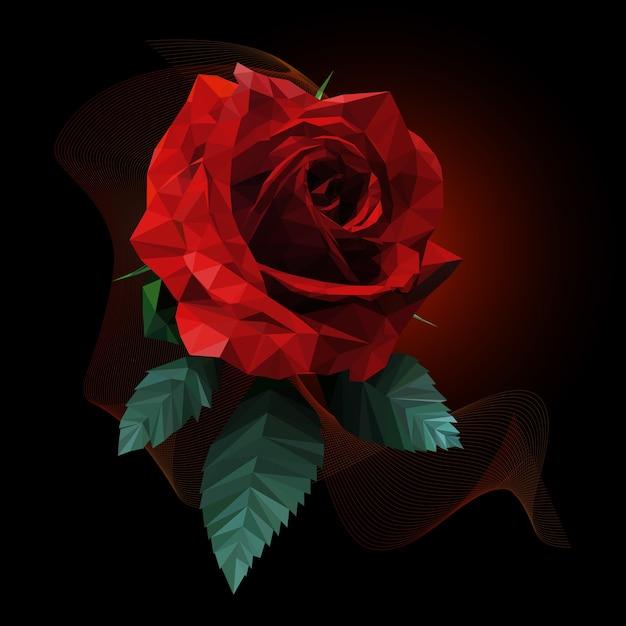 Romantico Stile Rosa Rossa Poli Basso Su Sfondo Scuro Scaricare