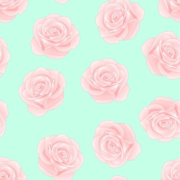 Sfondi rose verde