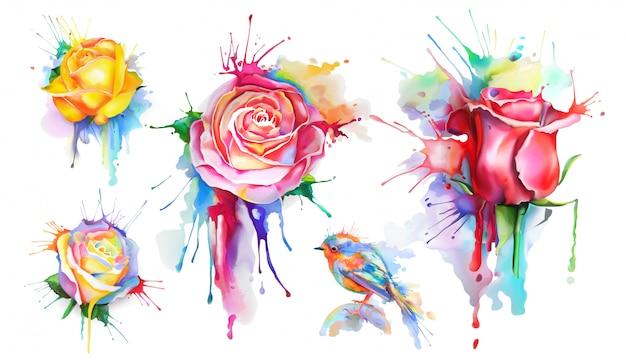 Rose dell'acquerello, set di icone vettoriali Vettore Premium