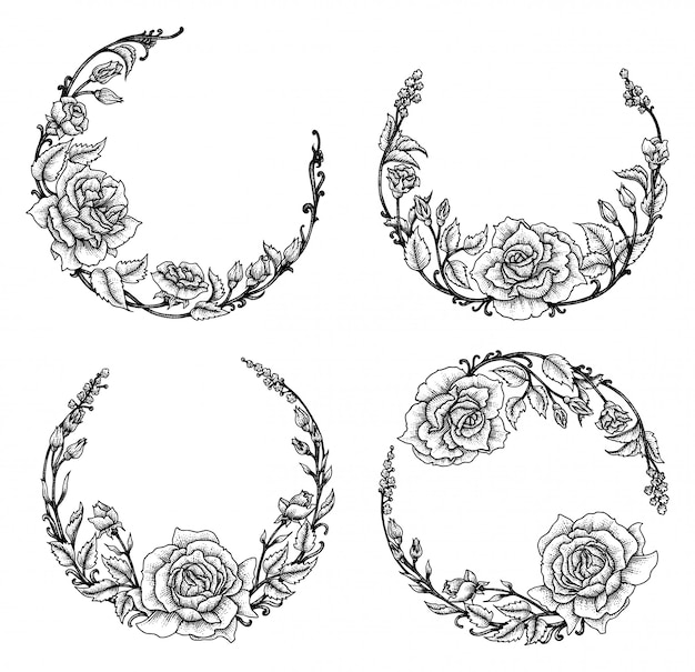 Rose floreale, set di illustrazione Vettore Premium