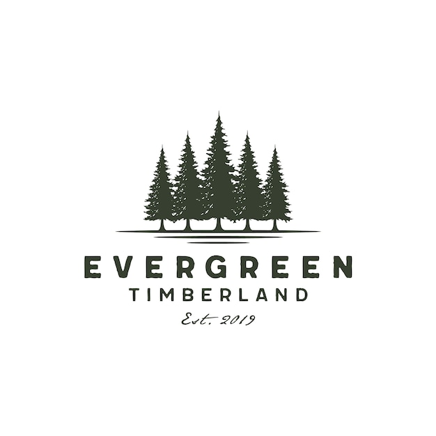 Rustico vintage sempreverde, pini, abete rosso, alberi di cedro logo Vettore Premium