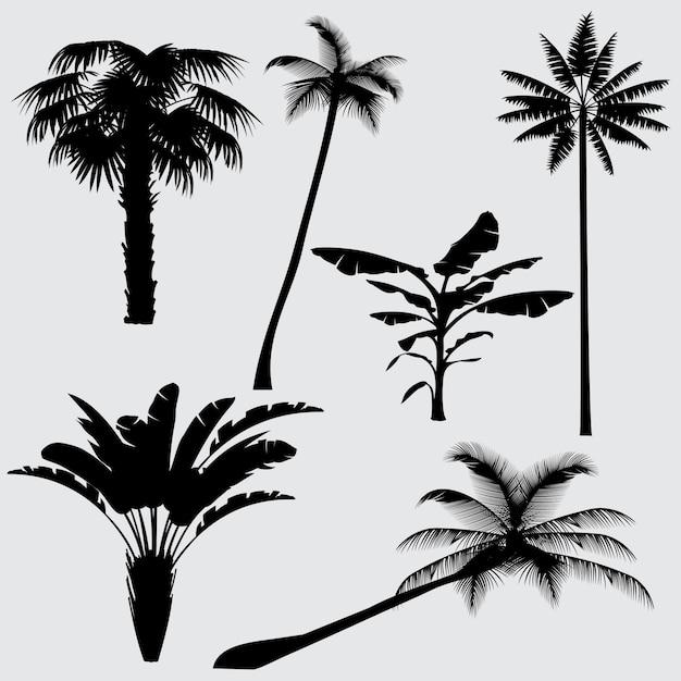 Sagome vettoriali di palma tropicale Vettore Premium