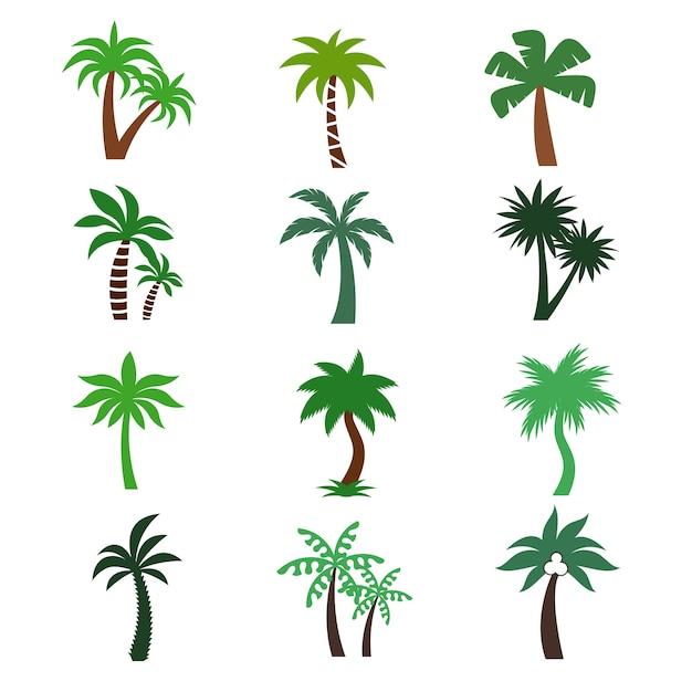 Sagome vettoriali di palme di colore Vettore Premium