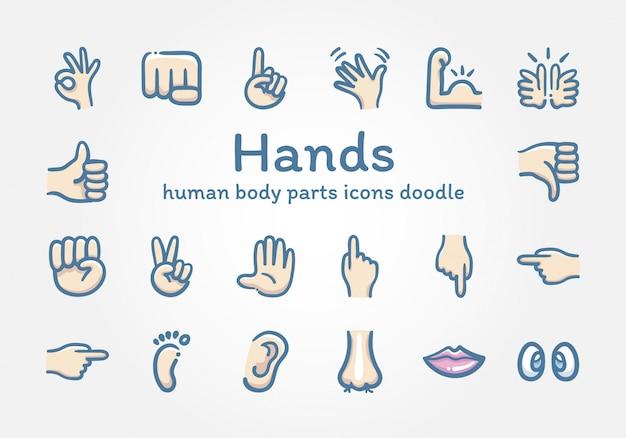 Scarabocchio delle icone delle parti del corpo umano e delle mani Vettore Premium