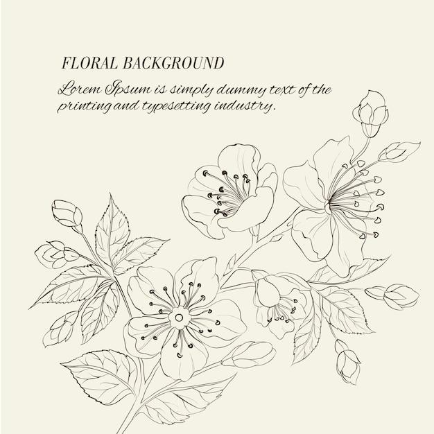 Scatch di primavera sakura Vettore gratuito