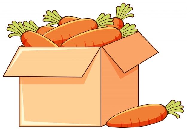 Scatola di carote su fondo bianco Vettore gratuito