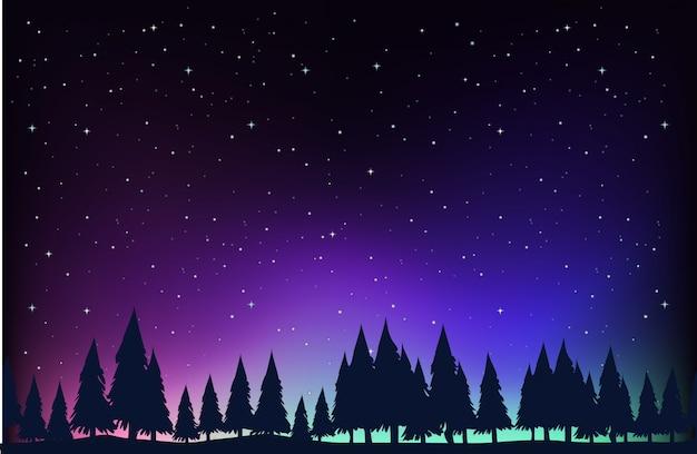 Scena con alberi di pino sullo sfondo di notte Vettore Premium