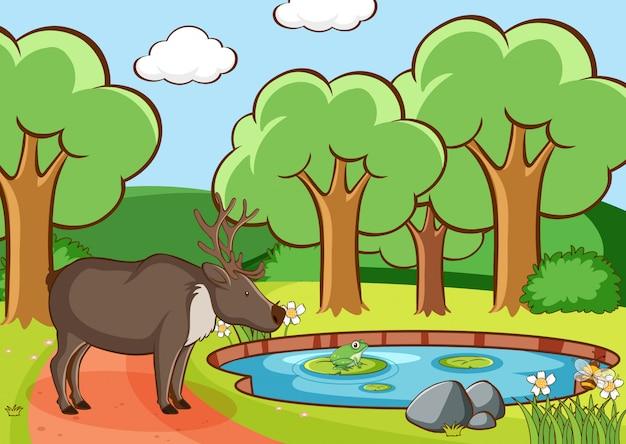 Scena con cervi nella foresta Vettore gratuito