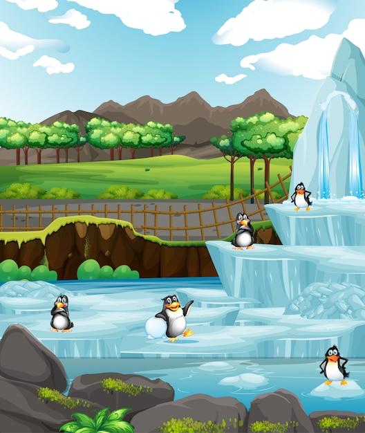 Scena con pinguini sul ghiaccio Vettore gratuito