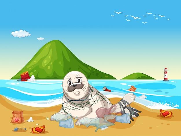 Scena con sigillo e rifiuti di plastica sulla spiaggia Vettore gratuito