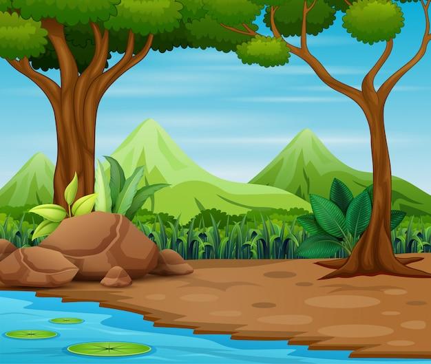 Scena della foresta con alberi e bellissimo paesaggio Vettore Premium