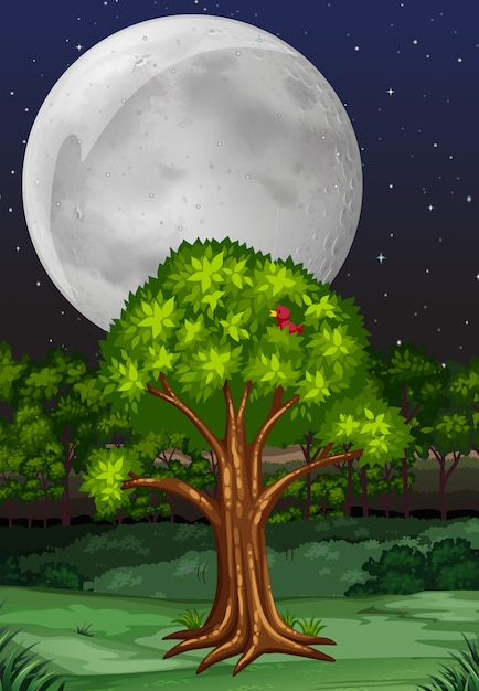 Scena della natura con albero e luna piena di notte Vettore gratuito
