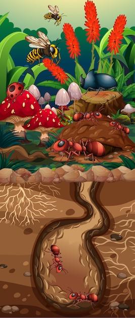 Scena della natura con labirinto di formica e fiori Vettore gratuito
