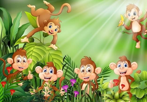 Scena della natura con un gruppo di cartoni animati scimmia