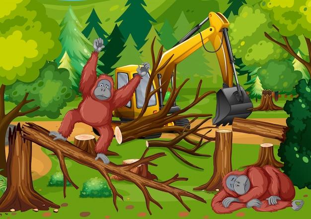 Scena di deforestazione con scimmia e trattore Vettore gratuito