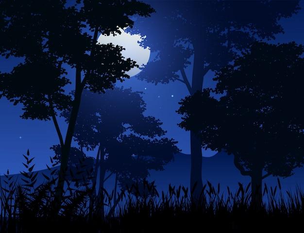 Scena notturna nella foresta Vettore Premium