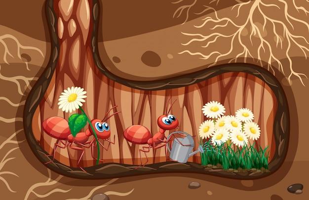 Scena sotterranea con piante di annaffiature Vettore Premium
