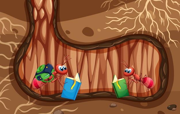 Scena sotterranea con un libro di lettura di due formiche Vettore Premium
