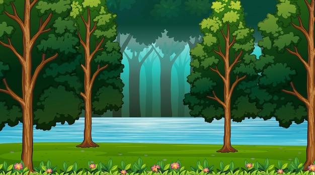 Scena vuota o backgroundry della natura del fondo Vettore gratuito