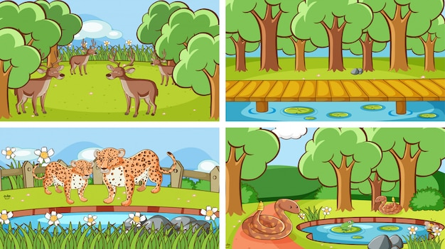 Scene di fondo di animali allo stato brado Vettore gratuito