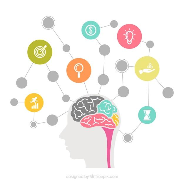 Schema del cervello con cerchi e icone Vettore gratuito