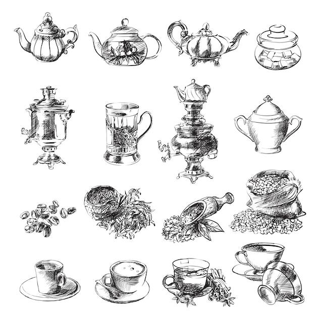 Schizzi di tè Vettore Premium