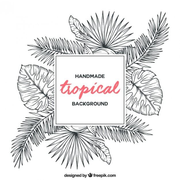 Schizzi piante tropicali sfondo Vettore gratuito