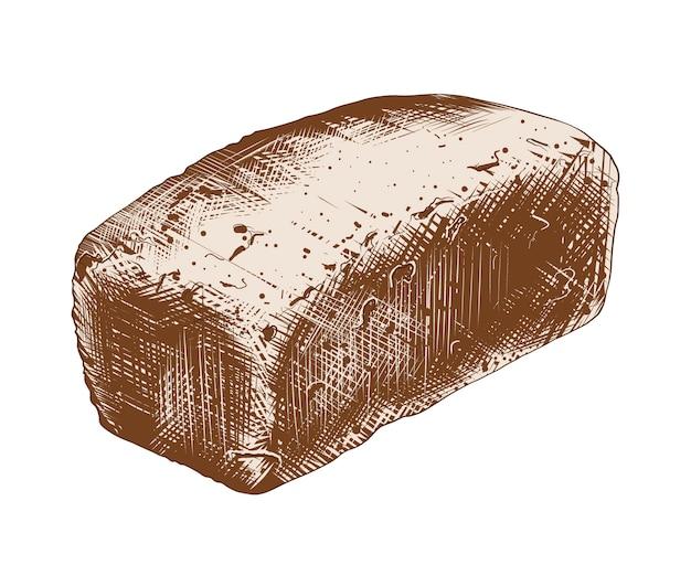 Schizzo disegnato a mano di pane integrale in variopinto Vettore Premium