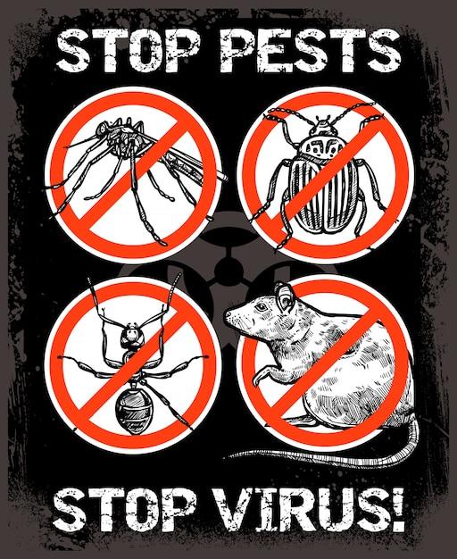 Schizzo sfondo di insetti parassiti Vettore gratuito