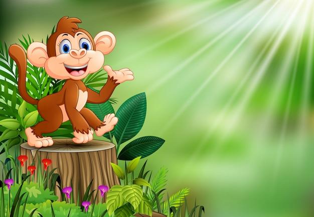 Scimmia felice del fumetto che si siede sul ceppo di albero con le piante verdi Vettore Premium