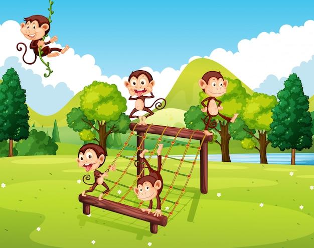 Scimmie che giocano sulla stazione di arrampicata Vettore gratuito