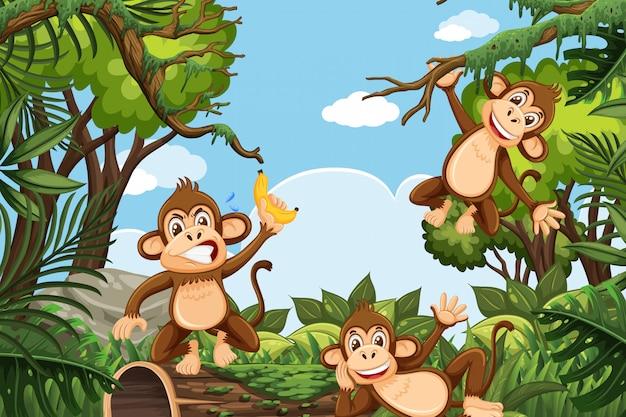 Scimmie divertenti nella scena della giungla Vettore Premium