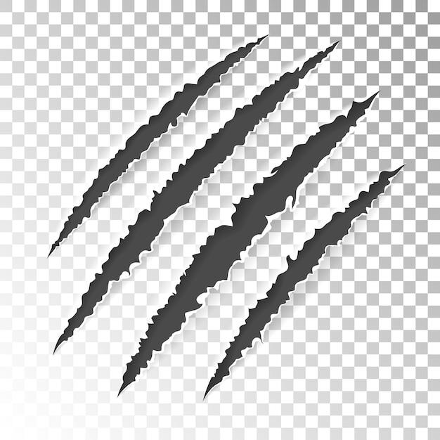 Scratch claws of animal Vettore Premium
