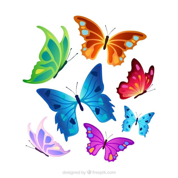 Selezione di farfalle colorate scaricare vettori gratis for Foto farfalle colorate