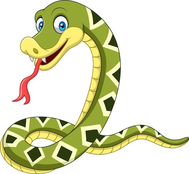 Serpente felice del fumetto isolato su priorità bassa bianca Vettore Premium