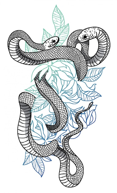 Serpente Vettore Premium