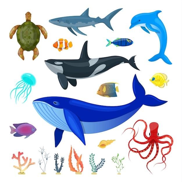 Set di animali dell'oceano Vettore Premium